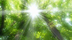 10. Коран – самая великая милость, проявленная человечеству